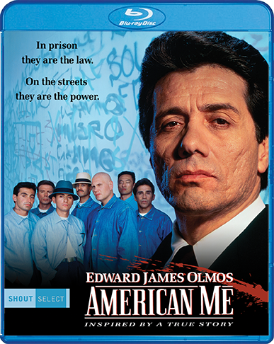 AmerMe_BR_Cover_72dpi.png