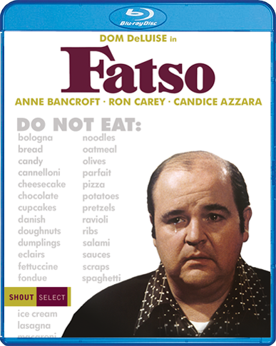 Fatso_BR_Cover_72dpi.png