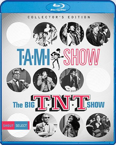 TAMI-TNT.BR.Cover.72dpi.png