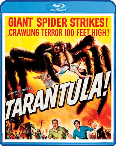 Tarantula.BR.Cover.72dpi.png
