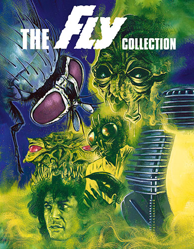FlyCollect_BR_Cover_72dpi.jpg