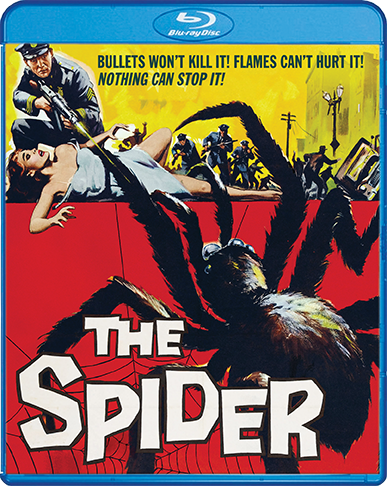 Spider_BR_Cover_72dpi.png