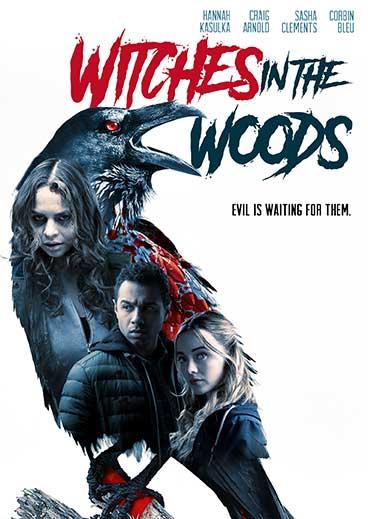 WITW_DVD_Cover_72dpi.jpg