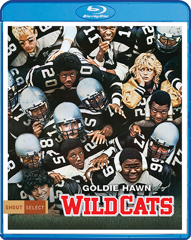 Wildcats_BR_Cover_72dpi.png